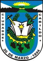 Municipalidad-de-Cabildo_logo-1web